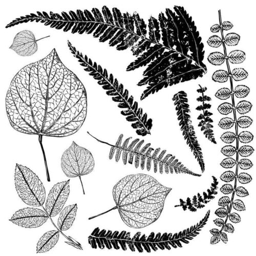 iron_orchid_designs_stamps_fronds_