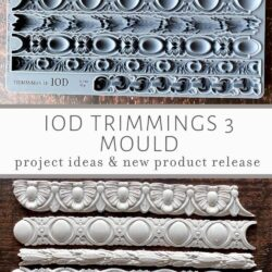 Trimmings 3 Mould IOD Front